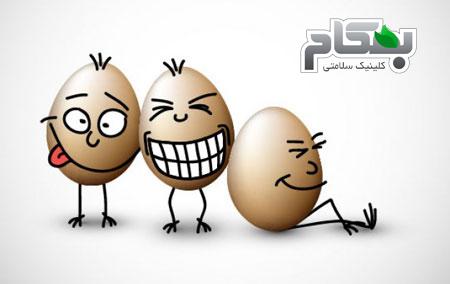 باورهای غلط درمورد کلسترول تخم مرغ!!